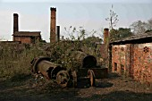Ledo Brickworks Assam with remains of Bagnall 600mm gauge 0-4-0STs following closure. March 2007.