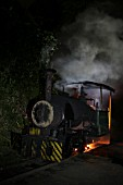 A night scene at Tipong Colliery on the Assam Coalfield featuring David  a 0-4-0ST 600mm gauge built by Bagnalls of Stafford in 1924