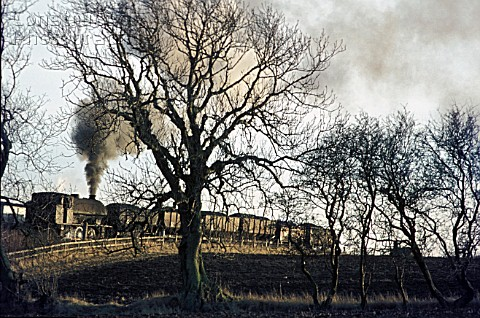 A Northumberland coalfield scene near Alnwick with a Hunslet designed Austerity 060ST hauling a trai