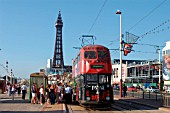 A busy scene on the promenade at Blackpool as one of the resorts famous heritage trams, adorned with typical advertising, stops to pick up holidaymakers with the landmark tower in the background. July 2004.