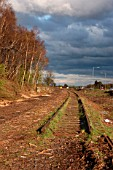 The Stirling to Alloa disused branch line in Scotland. View from trackbed looking to Dunfermline. April 2005.