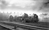 An LMS Princess Royal Class 6206 Princess Marie Louise stands in the shed yard flanked by a brace of Royal Scot Class 4-6-0 c1938