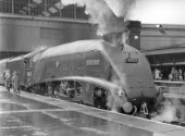 Ex LNER streamlined A4 Class Pacific 4-6-2 Mallard at London, Kings Cross. C1958