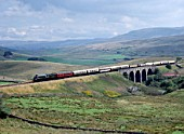 Cumbrian Mountain Express. No. 60009 Osprey heads north over Lunds viaduct en route from Appleby. 25.08. 1990.