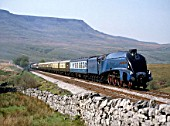 Streamline Express. No.4498 Sir Nigel Gresley at Ais Gill summit enroute from Appleby to Leeds with  Wild Boar Fell in background. 14.05.1988.