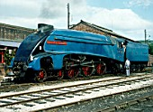 Cumbrian Coast Express. No.4498 Sir Nigel Gresley poses at Carnforth. 21.07.1981.
