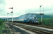 Cumbrian Coast Express. Sir Nigel Gresley brings a train into Ulverston. 15.08.1978.
