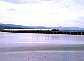 Arnside Viaduct. Unidentified Class 40 with chemical freight train heads for Carnforth. 5.8.80